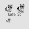 Raccoon Sticker Pack
